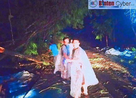 Hujan Angin Disertai Petir, Sejumlah Pohon Bertumbangan di Wilayah Kabupaten Serang