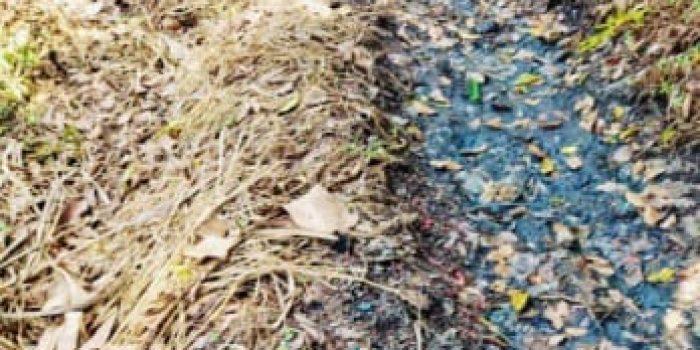 Diduga Ada Oknum yang Backup Pabrik Pengelolaan Limbah Plastik
